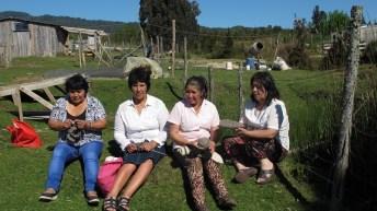 Ecopura: textiles con conciencia en base a algodón orgánico