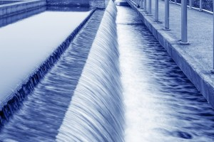 BASF es reconocida como líder mundial en gestión sostenible del agua