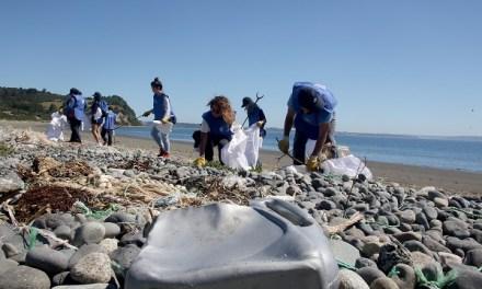 Voluntarios por el Océano cierra gira por el país recolectando más de 2500 kilos de basura en Chiloé