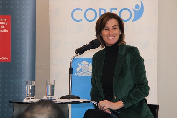 Corfo, Economía y Medio Ambiente lanzan programa de innovación en economía circular pionero en América Latina
