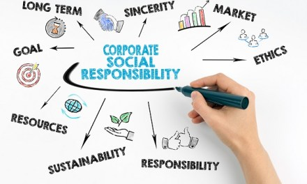 3 expertos nos hablan del camino hacia el desarrollo sustentable en las organizaciones y empresas