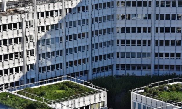 Techos verdes: Tendencia europea que de a poco se toma los tejados chilenos