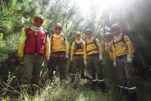 Empresas forestales aumentan en un 17% la dotación de brigadistas para esta temporada