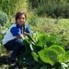 7 iniciativas del sector privado de Latinoamérica que buscan mejorar el medio ambiente e involucrar a las comunidades