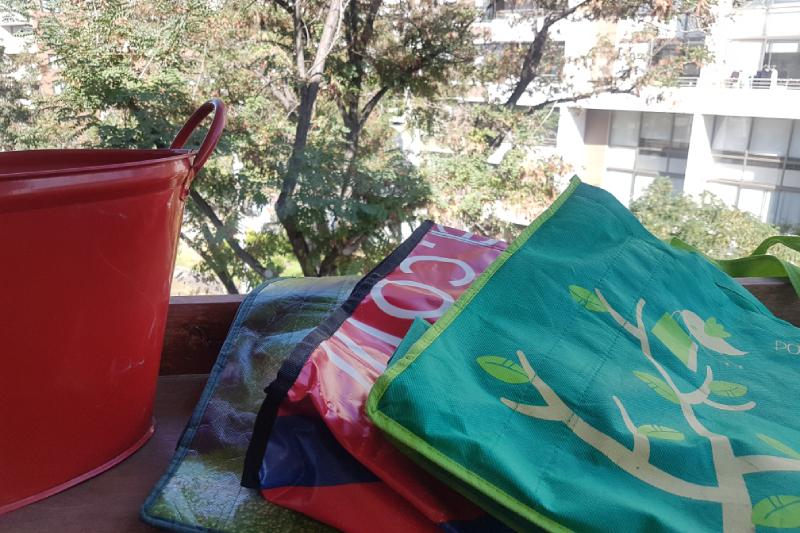 WWF Chile celebra prohibición de bolsas plásticas y comparte 10 consejos para adaptarse a la nueva ley