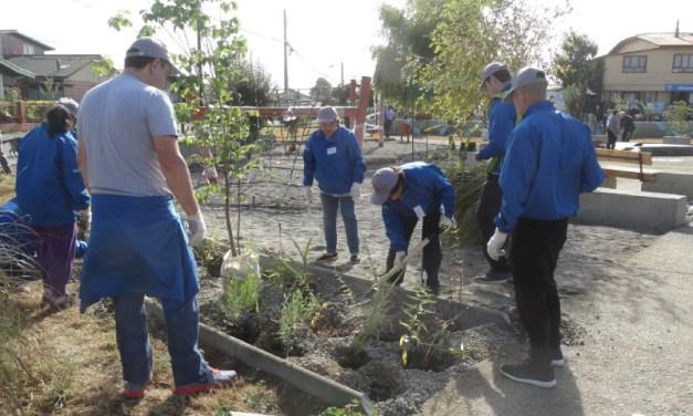 Svelty de Nestlé y Fundación Mi Parque recuperan plaza comunitaria para vecinos en Llanquihue