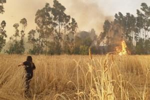 CMPC y Desafío Levantemos Chile se comprometen con reconstrucción de viviendas afectadas por incendios