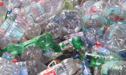 5 razones para reciclar en casa según Typack-Recipet