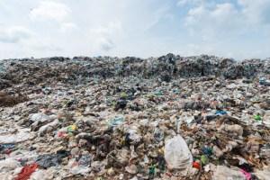WWF abre fondo para iniciativas ambientales ciudadanas en Chile