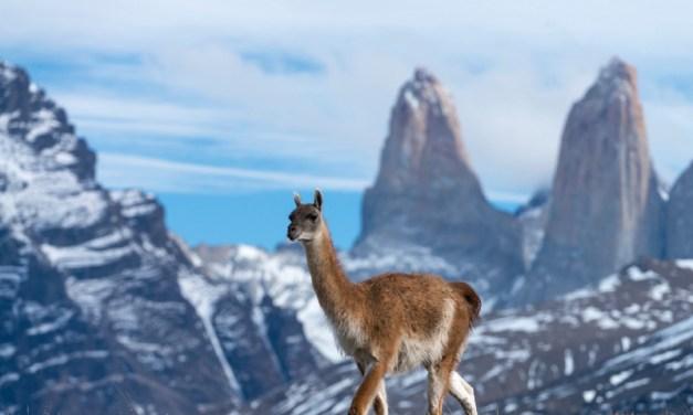 Chile suma nuevas Zonas de Interés Turístico al territorio