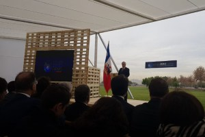 Plan de Descarbonización: WWF llama a apurar el ritmo y subir la ambición
