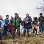 Restauran bosque nativo durante We Tripantu en la Cordillera de Nahuelbuta