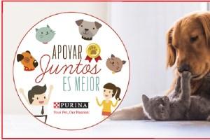 Nestlé Purina busca proyectos innovadores en beneficio de mascotas