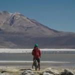 Atención ONGs: Esta es la última semana para postular a Programa de donaciones ambientales de Patagonia
