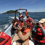 Región de Aysén logra el primer Plan de Manejo colaborativo para asegurar la conservación efectiva en un Área Marina Protegida