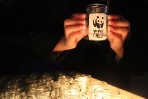 Hora del Planeta se realizará en Chile con acciones orientadas al hogar