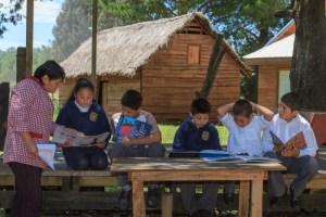 Fundación Educacional Arauco lanza plataforma de apoyo para profesores en medio de crisis sanitaria