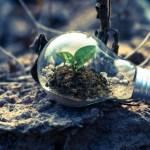 ¿Qué tan dispuesto estás a vivir una vida sustentable?