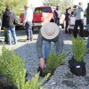 Fundación Reforestemos da inicio por 3er año consecutivo a su programa de donación de árboles nativos a pequeños propietarios y proyectos de conservación