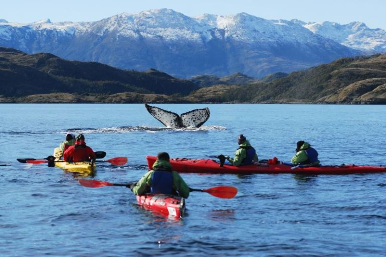Agencia de Punta Arenas busca ser la pionera en la reactivación del turismo en Chile