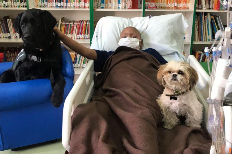 Nestlé Purina reparte $12.000.000 a tres proyectos que buscan beneficiar a las mascotas y a las personas que las aman