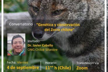 """Conversatorio """"Genética y Conservación del Zorro Chilote"""