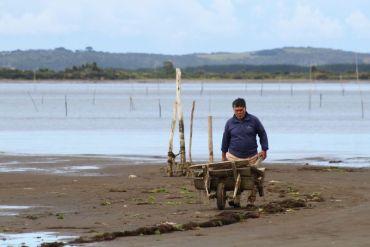 Seminario virtual abordará el rol de Indespa en la pesca artesanal y acuicultura de pequeña escala