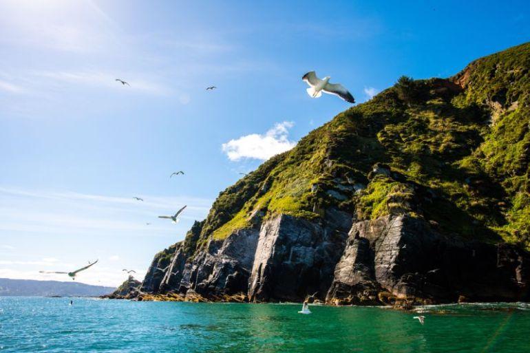 Buscan diseñar experiencia de turismo accesible en la costa de la Región de los Ríos