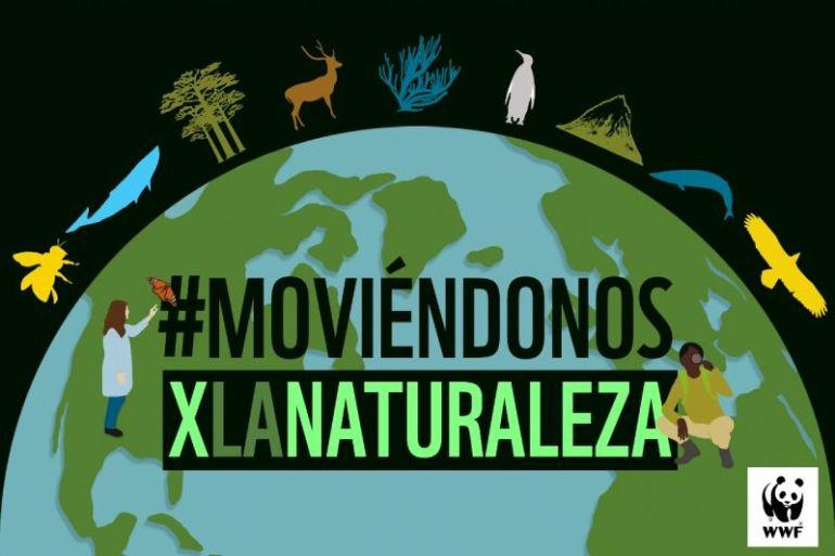 #MoviéndonosXLaNaturaleza: WWF Chile invita a su primer curso online sobre medio ambiente y cambio climático para jóvenes