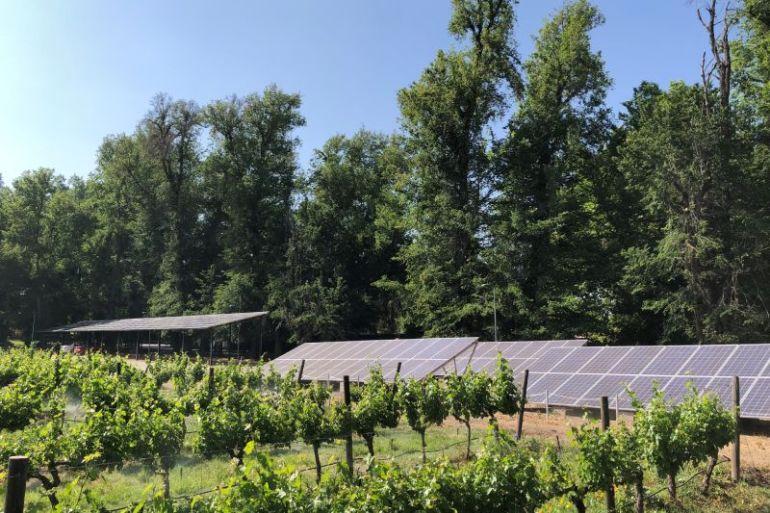 Viña Cousiño Macul inaugura proyecto fotovoltaico que permitirá mitigar la emisión de 200 toneladas anuales de CO2 a la atmósfera
