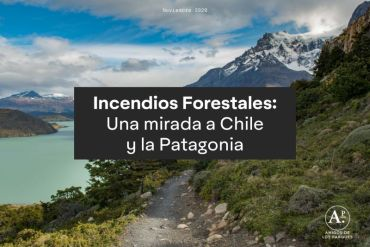 Amigos de los Parques publica informe y campaña de prevención sobre Incendios Forestales