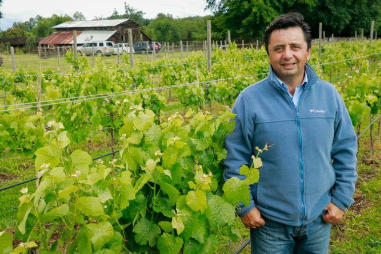 Ulagos y Viña Casa Klocker Prambs desarrollan investigaciones sobre vino espumante único en el país