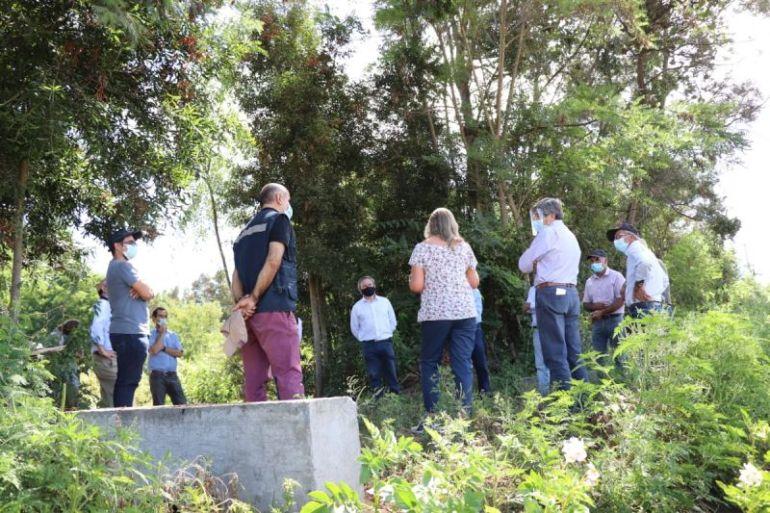 Mega cooperativa de pequeños viñateros apuesta por la exportación de vinos desde el Valle del Itata
