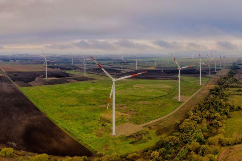 Melón inicia uso de energía 100% renovable en sus operaciones