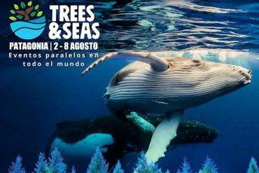 Plastic Oceans International y ÜÑÜ anuncian Festival Trees & Seas en Chile con foco en conservación de océanos y bosques