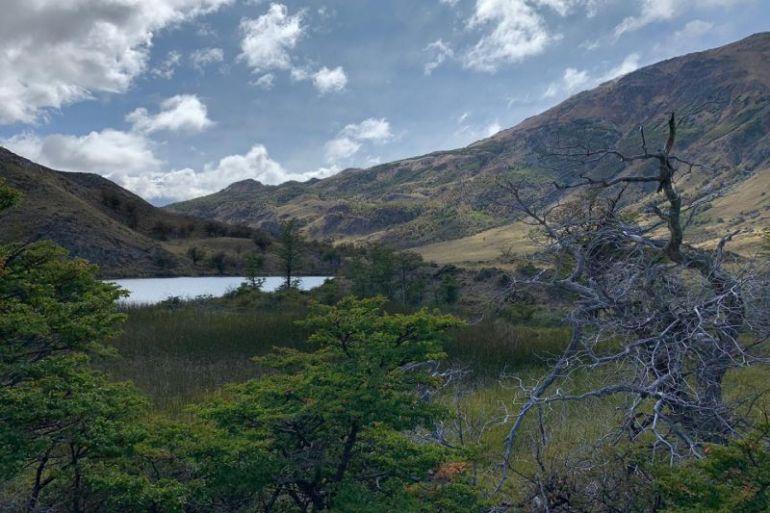 Amigos de los Parques destaca estudio que derriba falso dilema entre economía y biodiversidad
