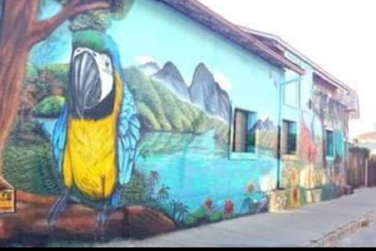 KNOP Laboratorios pintará mural de 200 m2 en Quilpué