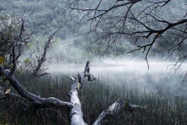"""Estos son los tres primeros lugares de las fotografías ganadoras de la II versión del Concurso """"Descubriendo los humedales de Chile"""""""