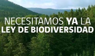 Destacan la importancia de aprobar el Proyecto de ley que crea el Servicio de Biodiversidad y Áreas Protegidas (SBAP)