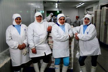 Salmonchile convoca a empresas productoras y proveedoras a mesa de trabajo para fomentar la equidad de género