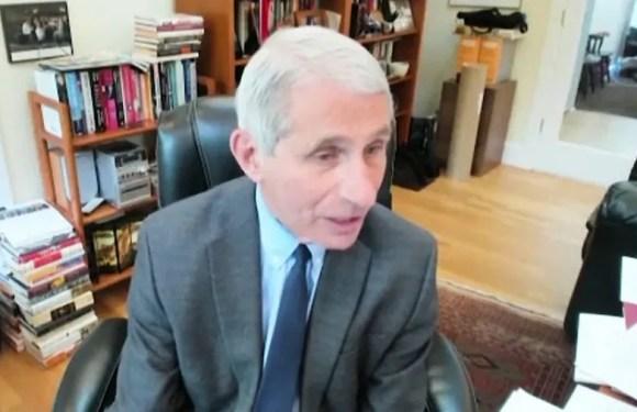 """El doctor Anthony Fauci advierte a los senadores de EE.UU. que reactivar el país demasiado pronto causará """"sufrimiento y muerte"""""""