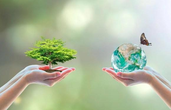 Nicaragua reclama alianza global ante degradación de la biodiversidad en cumbre de la ONU