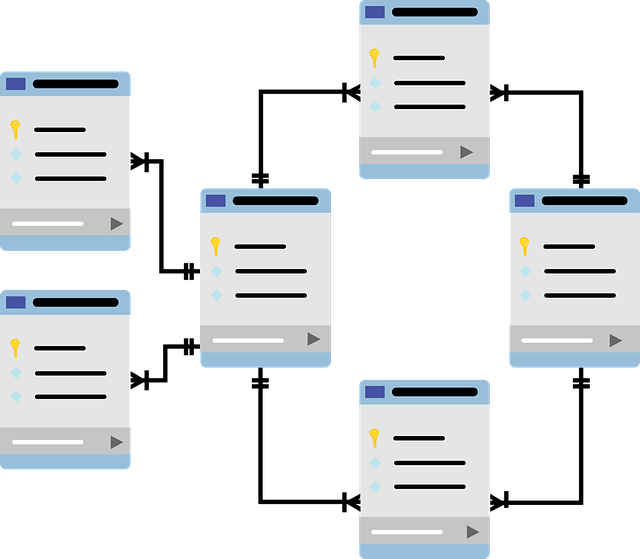 Tipos de lenguajes de bases de datos