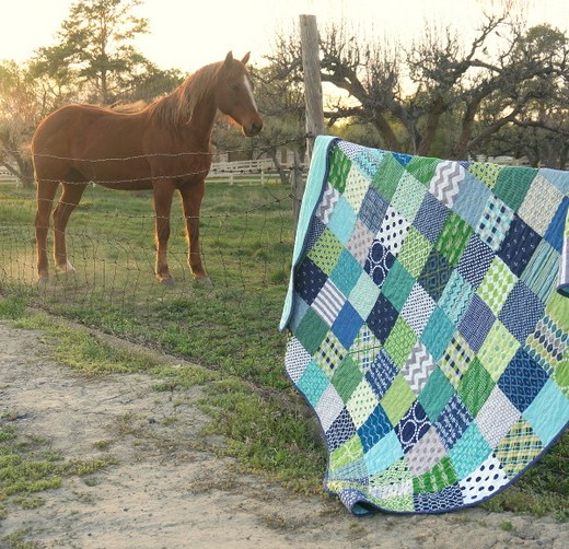 horse with a quilt