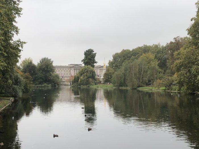 Buckingham Palace from St James park