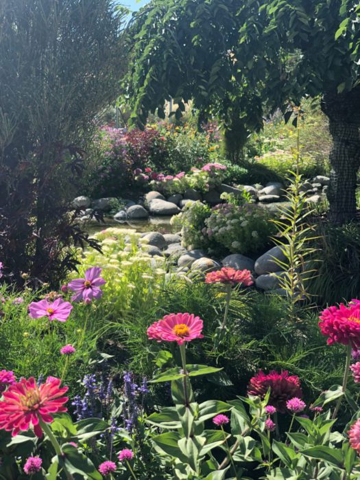 Garden of Quilts 2019 - Thanksgiving Point, Utah by popular quilting blog, Diary of a Quilter: image of a stream inside the Ashton Gardens.