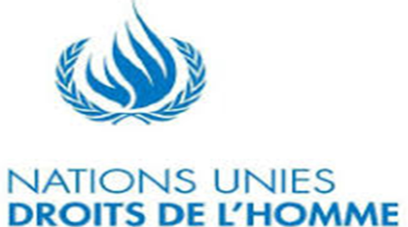 Ouverture 9ème session de formation sur les entreprises et droit international des droits de l'homme.