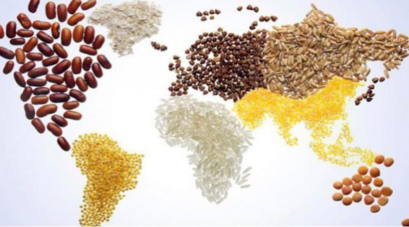 « Agir pour l'avenir, la faim Zéro en 2030 est possible ».