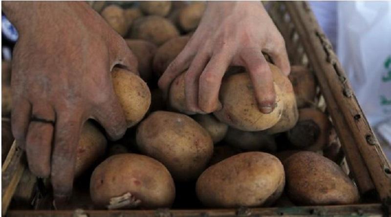 L'UE soutient les producteurs de frites congelées contre la Colombie