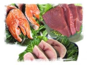 Αποτέλεσμα εικόνας για κρεας, ψάρι, γαλακτοκομικά.